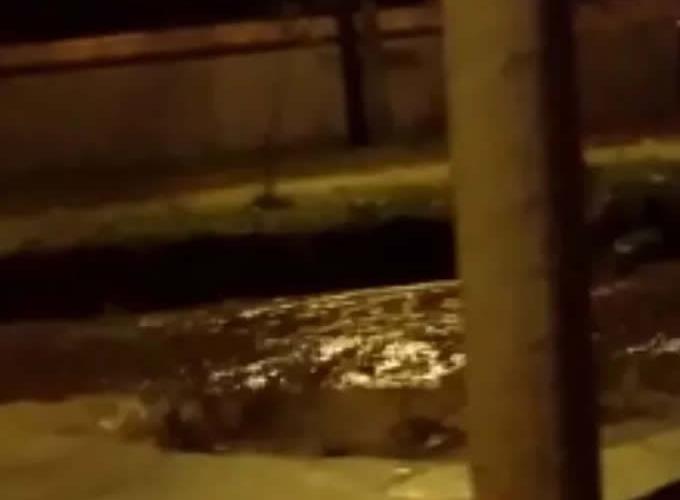 Chuva invade casas e deixa pessoas ilhadas; recepção do Hospital São Judas tem vazamento